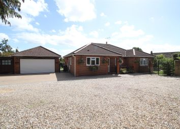 Thumbnail 4 bed detached bungalow for sale in London Road, Hook