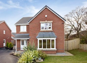 Thumbnail 4 bed detached house for sale in Waterloo Gardens, Monbank, Newport