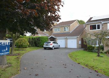 Thumbnail 4 bed detached house for sale in Sherbourne Avenue, Newbold, Chesterfield, Derbyshire