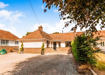 Thumbnail 3 bedroom bungalow for sale in Crescent Rise, Pulborough, West Sussex