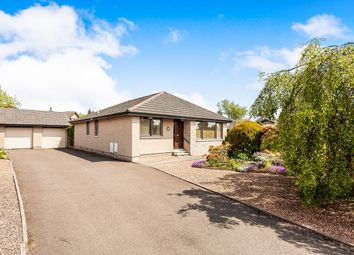 Thumbnail 3 bed detached house for sale in Latch Gardens, Brechin