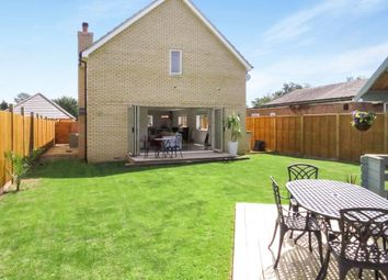 Thumbnail 4 bedroom detached house for sale in Church Street, Holme, Peterborough