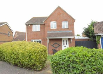 Thumbnail 3 bed detached house to rent in Poplar Close, Brandon Groves, Essex