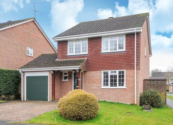 Thumbnail 4 bed detached house to rent in Oaktree Drive, Hook