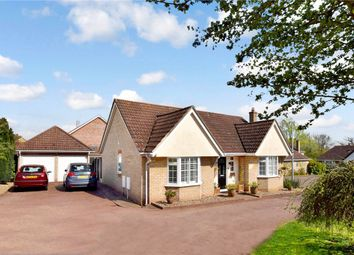 Thumbnail 2 bed bungalow for sale in Castle Meadow, Sible Hedingham, Halstead