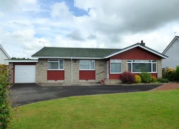 Thumbnail 3 bed detached bungalow for sale in Larchwood, Carlisle Road, Lockerbie, Dumfries And Galloway