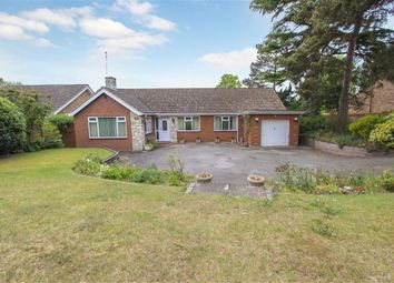 Thumbnail 3 bedroom detached bungalow for sale in Heath Road, Leighton Buzzard