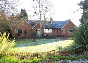 Thumbnail 5 bed detached bungalow for sale in Orton-On-The-Hill, Warwickshire