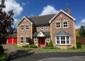 Thumbnail 4 bed detached house to rent in Nutfields, Ightham, Sevenoaks