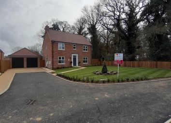 Thumbnail 4 bed detached house for sale in Water Lane, Little Plumstead, Norwich