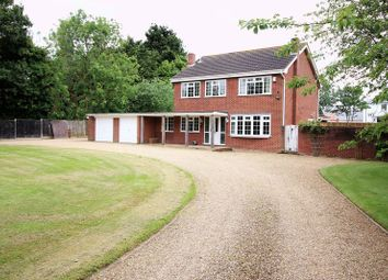 Thumbnail 4 bedroom detached house to rent in Low Road, Tibenham, Norfolk