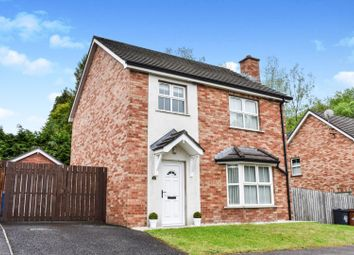 Thumbnail 3 bed detached house for sale in Bush Manor, Antrim