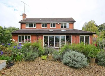 Thumbnail 4 bedroom detached house to rent in Turners Gardens, Sevenoaks
