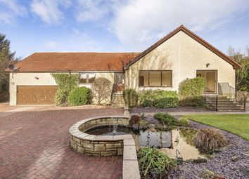 Thumbnail 4 bedroom bungalow for sale in Main Street, Balmalcolm, Fife