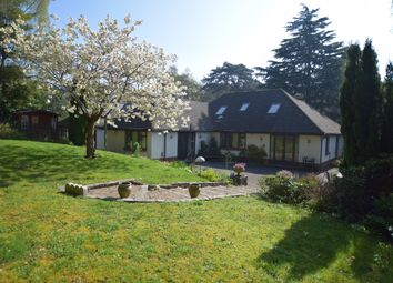 Thumbnail 5 bed bungalow to rent in Lindsay Road, Branksome Park, Poole