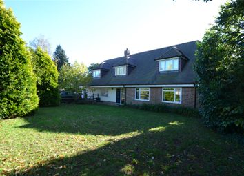 Thumbnail 4 bed detached house to rent in Rew Lane, Chichester, West Sussex