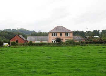 Thumbnail 3 bed detached house for sale in Cilycwm Road, Llandovery