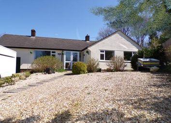 Thumbnail 4 bed bungalow for sale in Rawridge, Honiton, Devon