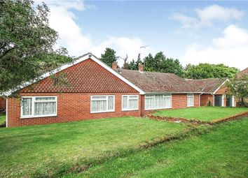 Thumbnail 4 bed bungalow for sale in Rectory Meadow, Sible Hedingham, Halstead