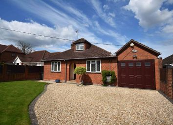 Thumbnail 4 bed bungalow for sale in Reading Road, Chineham, Basingstoke