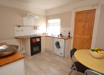 Thumbnail 2 bedroom terraced house to rent in Rosewood Terrace, Exeter