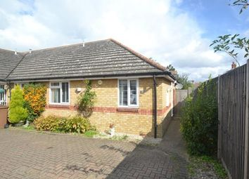 Thumbnail 2 bed bungalow for sale in Roxwell, Chelmsford, Essex