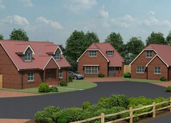 Thumbnail 4 bed detached house for sale in Glebe Court, Fair Oak, Eastleigh