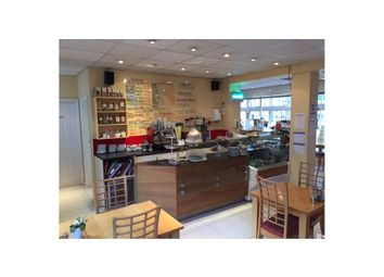 Thumbnail Restaurant/cafe for sale in Chocaccino, Plymouth