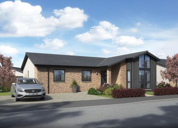 Thumbnail 4 bed detached bungalow for sale in Forth Park Residences, Kirkcaldy, Fife
