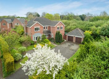 Thumbnail 5 bed detached house for sale in Perch Close, Daventry