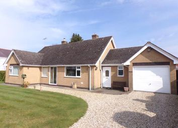 Thumbnail 2 bed bungalow for sale in Black Brook, Sychdyn, Mold, Flintshire