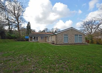 Thumbnail 5 bed bungalow to rent in Oaktree Close, Rodmell Road, Tunbridge Wells