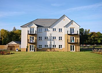 Thumbnail 3 bed flat for sale in Doonvale Drive, Ayr