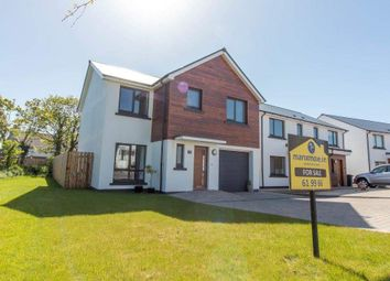 Thumbnail 4 bed detached house for sale in Cronk Cullyn, Colby
