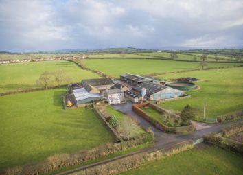 Thumbnail Farm for sale in Southwaite, Carlisle