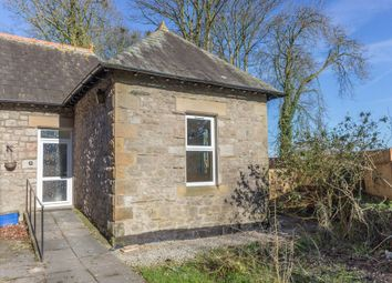 Thumbnail 2 bed semi-detached bungalow to rent in Hincaster, Milnthorpe