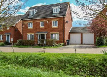 Thumbnail 5 bed detached house to rent in Lapwing Way, Soham, Ely