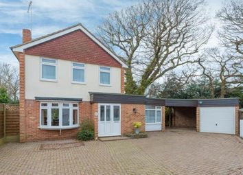 Thumbnail 3 bedroom detached house for sale in Oakwood Avenue, Hutton, Brentwood, Essex
