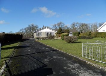 Thumbnail 4 bed detached bungalow for sale in Henllan, Llandysul