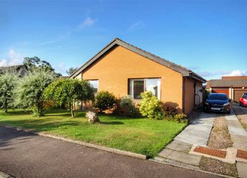 Thumbnail 2 bed detached bungalow for sale in 1, Hay Fleming Avenue, St Andrews, Fife
