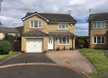 Thumbnail 4 bed detached house for sale in Humford Green, Blyth