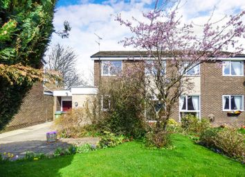 Thumbnail Semi-detached house to rent in Sweetbriar Close, Morpeth