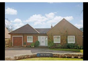 Thumbnail 5 bedroom bungalow to rent in Keswick Road, Bookham