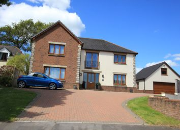 Thumbnail 4 bed detached house for sale in Dol Yr Onnen, Monument Hill, Carmarthen, Carmarthenshire
