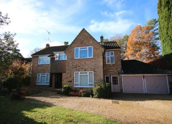 Thumbnail 4 bed detached house to rent in Queen Mary Close, Fleet