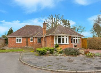 Thumbnail 4 bed bungalow for sale in Swannells Wood, Studham, Dunstable