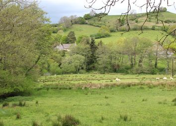 Thumbnail 5 bed detached house for sale in Loscombe, Bridport, Dorset