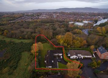 Thumbnail Detached house for sale in 7, Mornington, Belfast