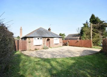 Thumbnail 4 bedroom bungalow for sale in Jenkins Lane, St. Leonards, Tring