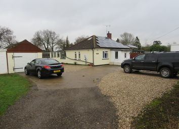 Thumbnail 4 bed detached bungalow for sale in Green Lane, Ardleigh, Colchester